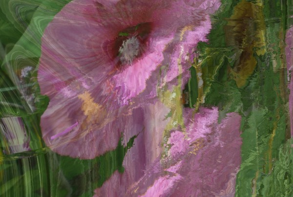 Allen Gene Hirsh, Mrs. Hibiscus is Ready for Church, Mathematically transformed image on ultra premium photo paper, Winter Member Show 2017