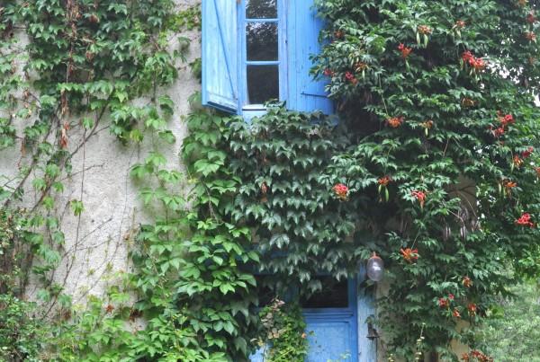 Karen Guay, Farm House Door and Window