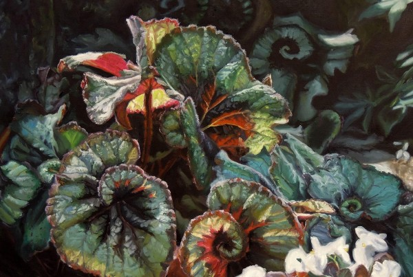 Jennifer Kahn Barlow, Begonia Escargot  oil on canvas