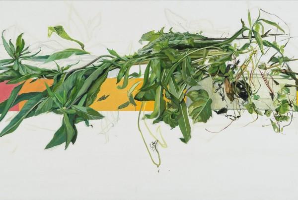 Emily Glass, I Discard , Flora or Fauna 2017