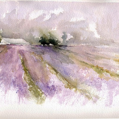 Alex Tolstoy, Lavender Fields , watercolor, Global Landscapes 2016