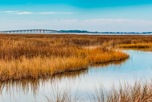 Eastern Shore, Hoopers Island, Maryland, digital archival photograph on fine art paper, by Marie York