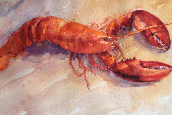 Stacey Sass, %22Luscious Lobster%22, watercolor at Paul's Homewood Cafe