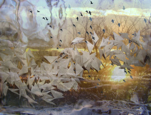 Flight, mixed media, by Joan Machinchick,