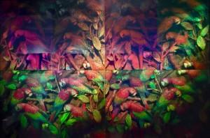 Parrots in Tree, 8 reflecting holograms, Alan Rhody