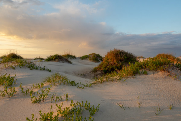 Sunset on The Dunes, photography, gaetana D ebbole